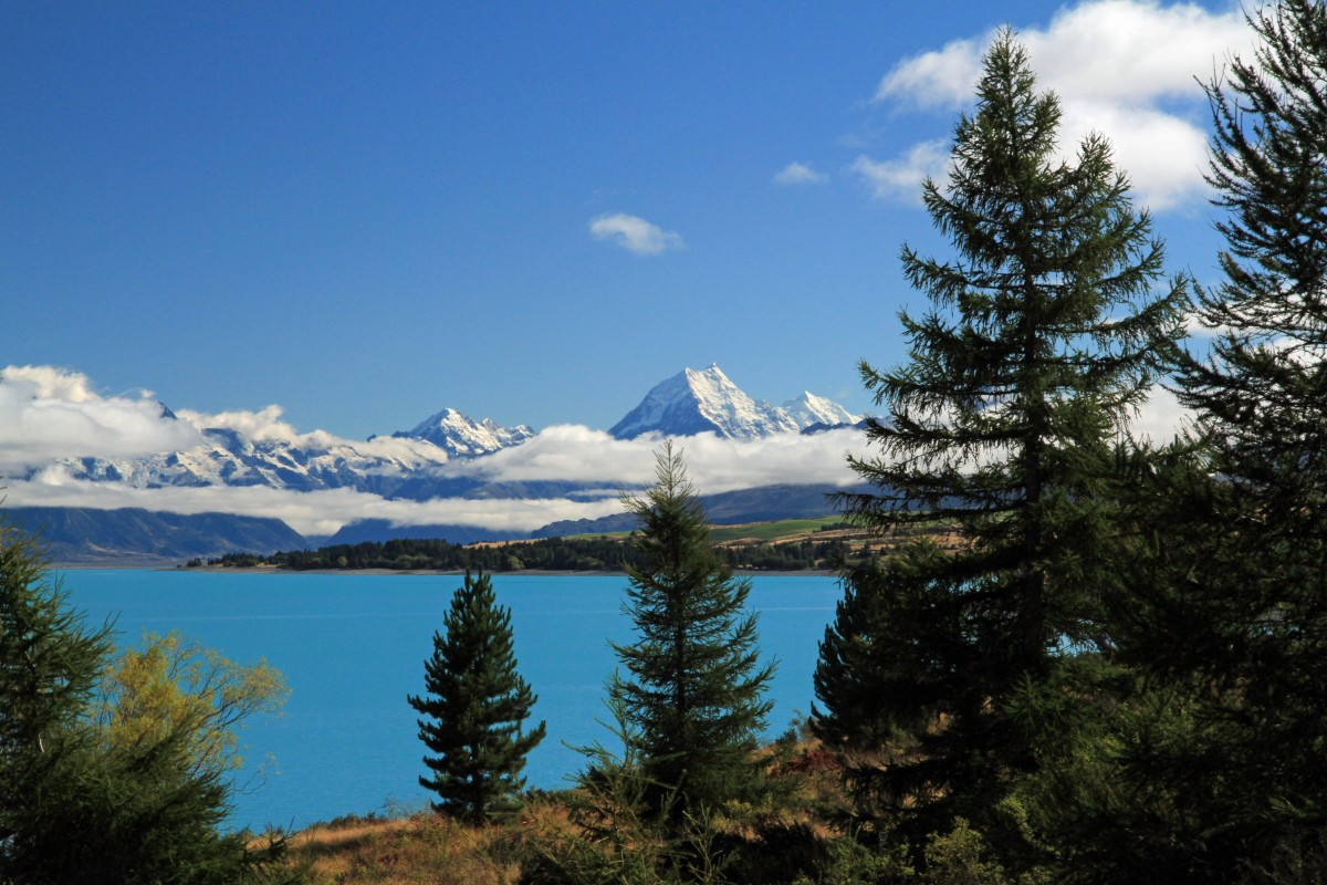 Mount Cook in all her glory!