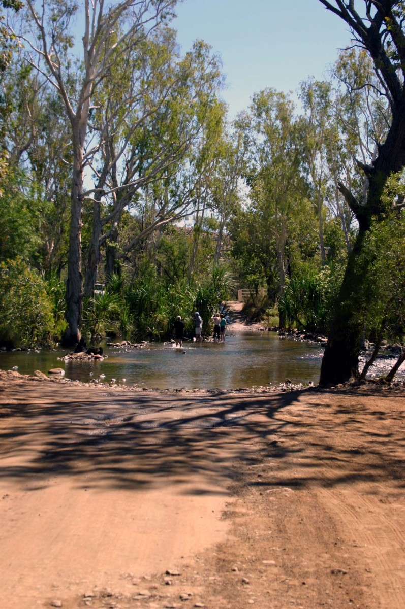 Fording the Pascoe River