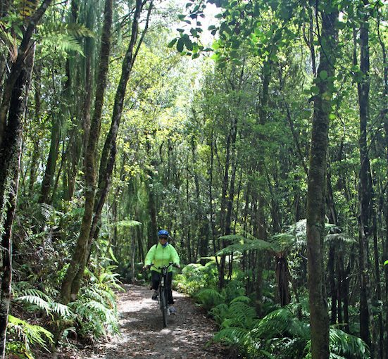 West Coast Wilderness Trail on my E-bike! Through forests, water races, lakes, past Tasman Sea & historic buildings!